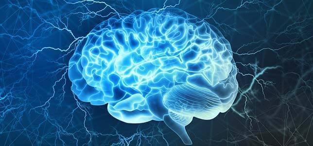 Neuroscience Recovery and Addiction