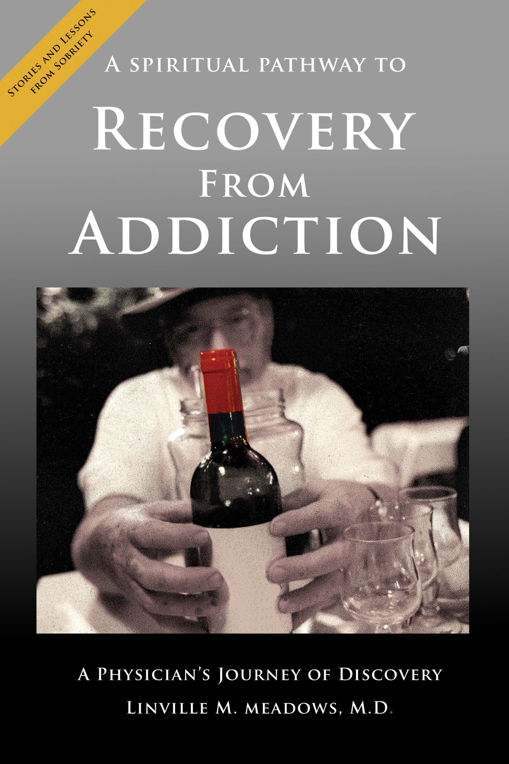 Dr. Lin Meadows Talk Recovery
